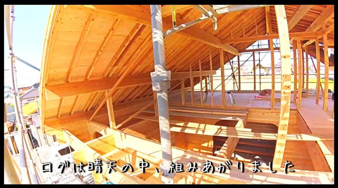 ログハウスが組み上がりました。